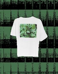 CLICK: T-shirt asimmetrica in cotone con stampa