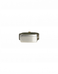 ELLIPSE: Studded belt with plaque buckle